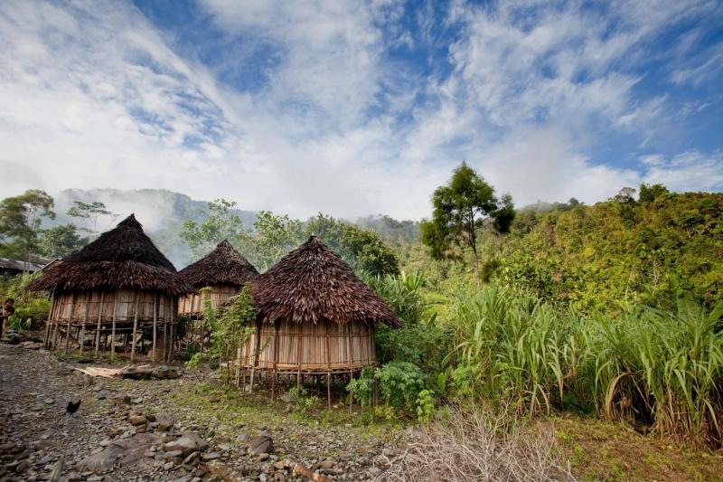 Sau hai tháng làm việc ngoài đồng tại một ngôi làng nhỏ ở quần đảo Solomon (Papua New Guinea), Erin đang nỗ lực viết tiểu luận.