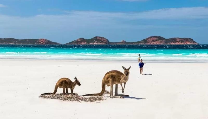 Đất nước Úc có nguồn tài nguyên thiên nhiên phong phú và độc nhất