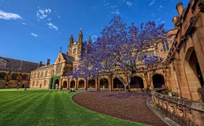 Đại học Sydney, ngôi trường vô cùng lâu đời tại nước Úc