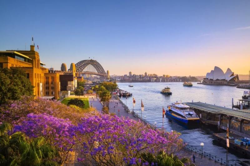 Đến với Sydney bạn phải đi một chuyến phà qua cảng Sydney