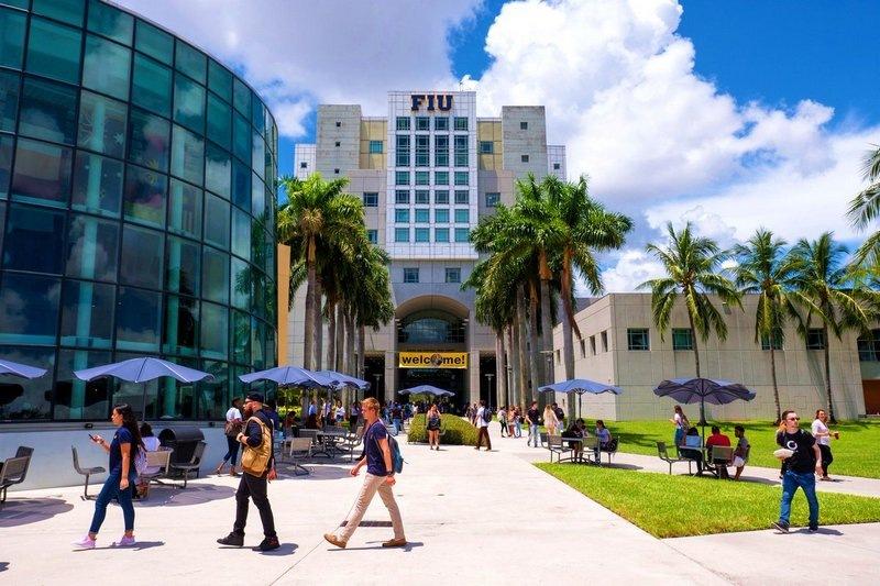 Đại học Florida đang có khoảng hơn 200 khoá học trực tuyến bậc cử nhân và chương trình đào tạo sau đại học dành cho sinh viên